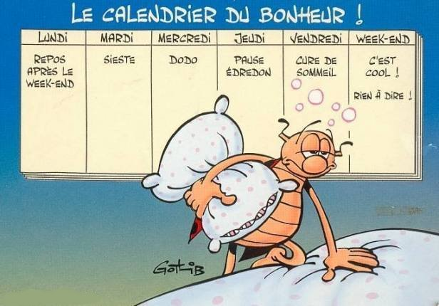 http://sboisse.free.fr/societe/images/le-calendrier-du-bonheur-selon-gotlib.jpg